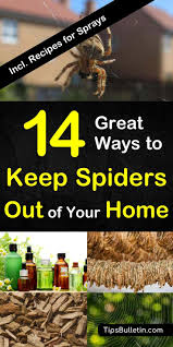 spiders are something most people are not crazy about and they certainly do not want them in their home this is especially true if you live in an area