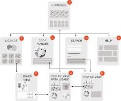 the sitemap scheme with logical connections between the elements of the database there are eight