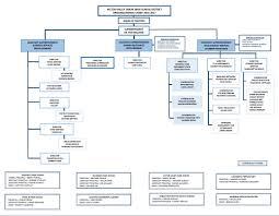 organizational chart 2016 2017