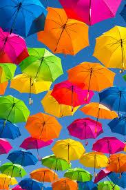 27+ <b>Umbrella</b> Pictures | Download Free Images on Unsplash