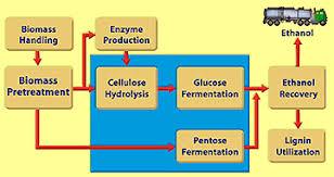 Ethanol Production Process Flow Chart Ethanol Production Process Cellulosic Biomass