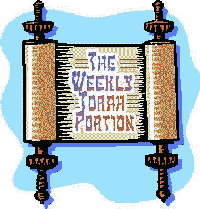 Image result for weekly torah portion