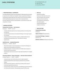 Best resume objective examples examples of some of our best resume objectives including resume samples free to use for writing your resume when hunting for a quality assurance job having a great. Professional Resume Examples By Industry Tips Hloom
