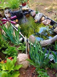 Diy Pond Diy Koi Fish Goldfish Pond Great Ideas Pinterest Goldfish