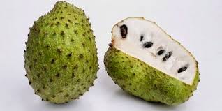 Image result for Annona