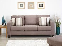 Stylish Ideas Couch Living Room Interesting Living Room Beauty In Sofa Living Room