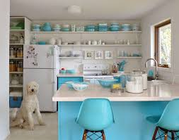 Open Shelving In Kitchen Honest Thoughts On Open Shelving In The Kitchen Dans Le Lakehouse