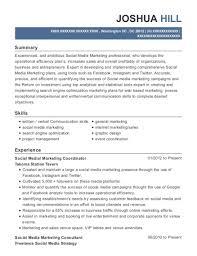 Digital Strategist Resume Initiative Canada Senior Digital Strategist Resume Sample