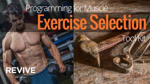 programming for muscle exercise selection tool kit