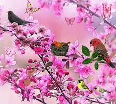 """Résultat de recherche d'images pour """"gif fleur printemps"""""""