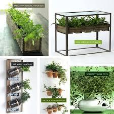 Indoor Garden Design Ideas Amazing Indoor Kitchen Herb Garden Ideas M O O R E A S E A L Indoor Herb