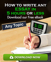 How to write custom essay     tips and suggestions