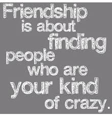 Funny Friendship Quotes Impressive Funny Friendship Quotes With Pictures SayingImages