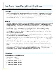 Formatting Resume Custom Perfect It Resume Professional It Resume Template Or Perfect It