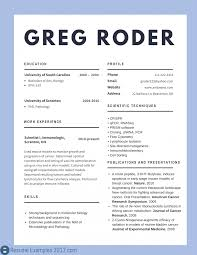 Best Cv Sample Resume Examples To Try How Write Therfect Example