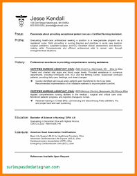 Best Nursing Aide And Assistant Resume Example 26001463995 Nurse