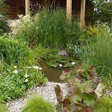 how to build a wildlife pond