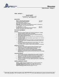 Resume Skill Section Resume Skill Section Skills For Resumes Examples Included Resume 8
