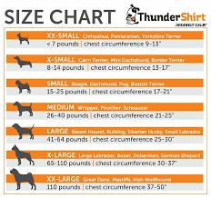 Cairn Terrier Growth Chart Miniature Schnauzer Height Chart American Honda Sales
