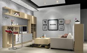 Modern Living Room Ceiling Design Apartment Living Room Decor Benrogerspropertycom