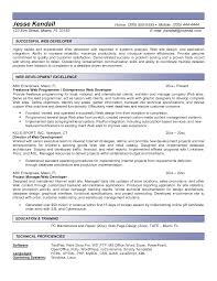 40 Job Winning Web Developer Resume Samples Vinodomia