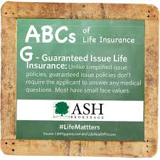 Guaranteed Issue Life Insurance Quotes Enchanting Guaranteed Issue Life Insurance Quotes Quotes Of The Day