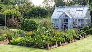 raised bed gardening mistakes gardener