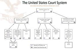 Image Result For Full Diagram Of The Supreme Court Of The