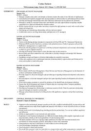 Account Manager Resume Sample Sales Account Manager Resume Samples Velvet Jobs 72
