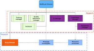 Diagram Of Organizational Chart Organizational Chart Under The Supervision Of The Mobilab