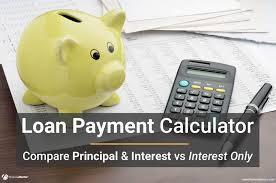 Interest Only Loan Calculation Payment Calculator