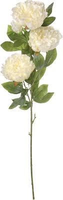 """<b>Цветы</b> искусственные <b>Engard</b> """"<b>Пион</b>"""", цвет: белый, 105 см ..."""
