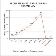 Fertility Bio Progesterone