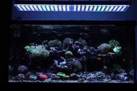 atlantik v4 reef led light orphek reef aquarium led light atlantik v4 best led aquarium lighting25 beautiful fish reef aquarium