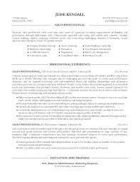 Entry Level Sales Resume Sample Marketing Resume Examples Entry