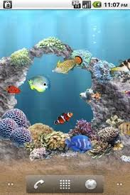 moving fish wallpaper for phones. Beautiful Moving Images Via Wonderhowtocom To Moving Fish Wallpaper For Phones W