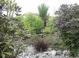 Small Picture native garden design Native Plantings NZ Dry River Garden