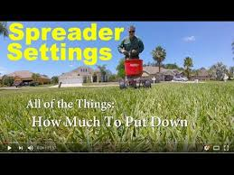 How To Fertilize Your Lawn Step By Step