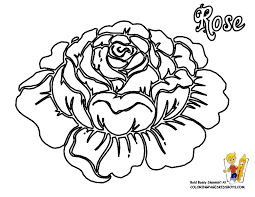 flowers coloring pages roses free rose flower rose coloring rose coloring pages and book uniquecoloringpages