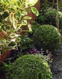 Small Picture Garden Plan Design Birmingham Landscape Gardeners West Midlands