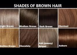 Pin By Sarah Von Paul On Hair Ideas Brown Hair Colors