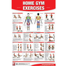 Core Exercises Chart Home Gym Exercise Chart Exercises Gym Workout Chart