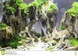 Nano Aquarium Design Freshwater Aquarium Design Stock Image Image Of Exhibition