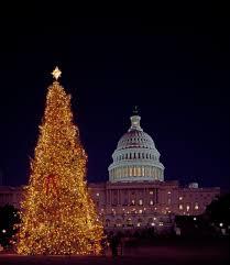 Dc Holiday Lights Tour Washington D C Christmas Lights Tour Coupon Green