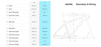 Santa Cruz Jackal Dirt Jump Bike Build Review