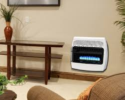 dyna glo 30 000 btu natural gas blue flame vent free wall heater ghp group inc