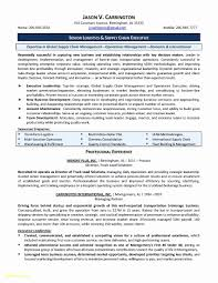 Resume Letter Examples Luxury Senior Executive Cover Letter Examples