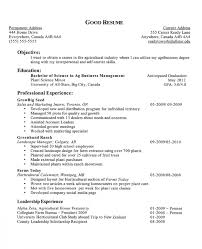 Objective Examples For A Resume Resume Career