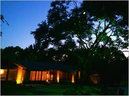 moonlight driveway dallas landscape lighting bgg