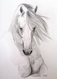 horses drawings. Simple Horses Horse Drawing  Misterioso By Janina Suuronen In Horses Drawings E